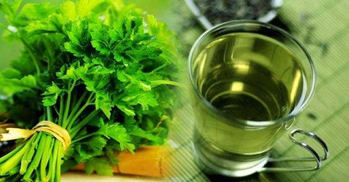 Петрушка для здоровья человека – польза и вред растения, правила употребления и лечебные рецепты