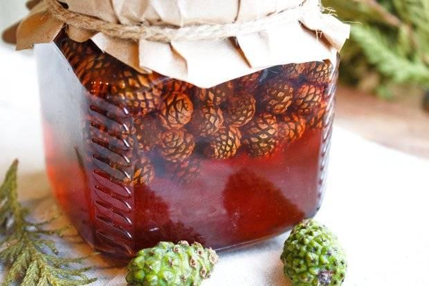 Варенье из сосновых шишек – сборник вкусных и полезных рецептов
