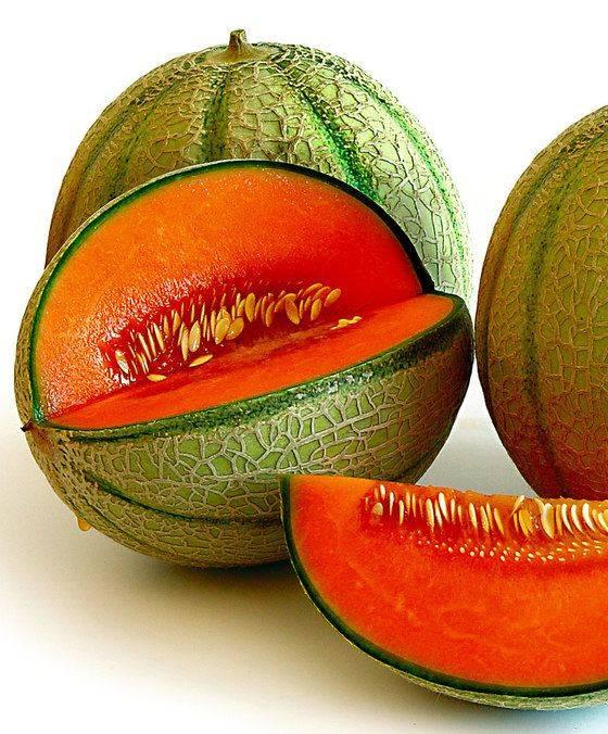 Кивано: что это такое, описание растения и плода, полезные свойства