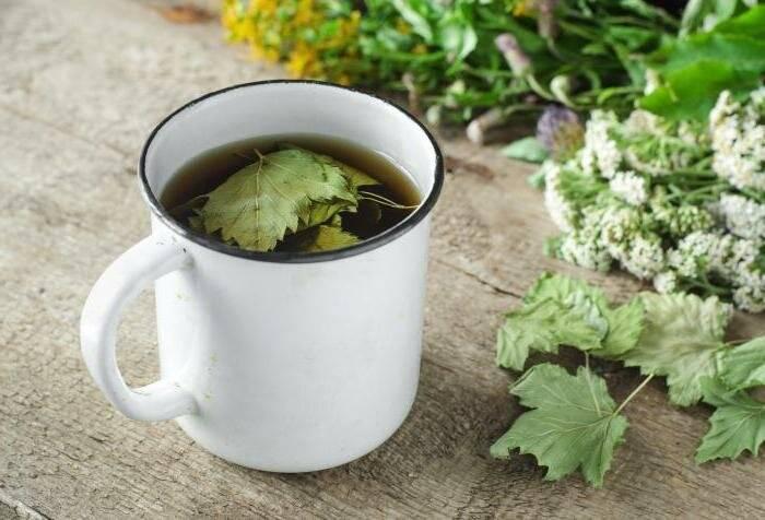 Чай из листьев смородины – укрепляет иммунитет со вкусом