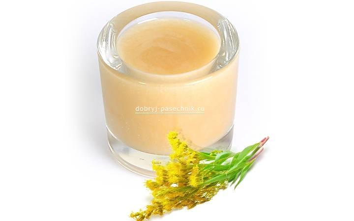 Прекрасный донниковый мед и его полезные свойства