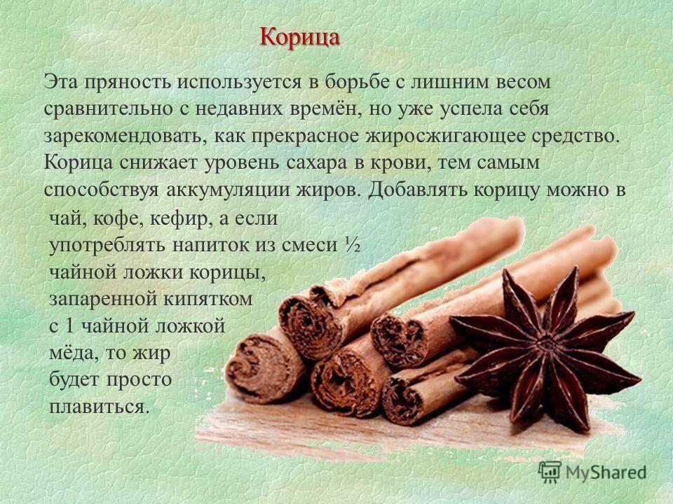 Корица — польза и вред для здоровья организма