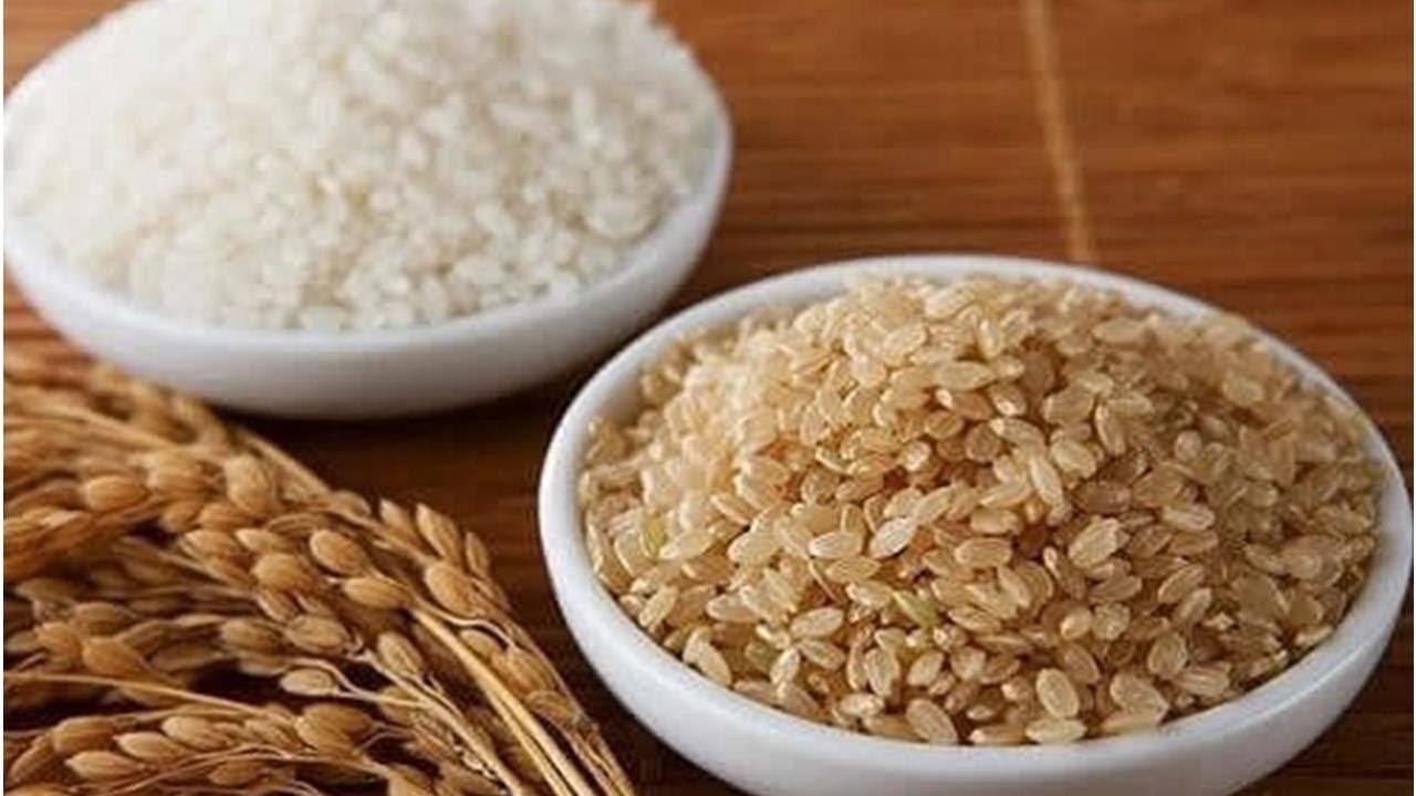 Действительно ли так полезен бурый рис