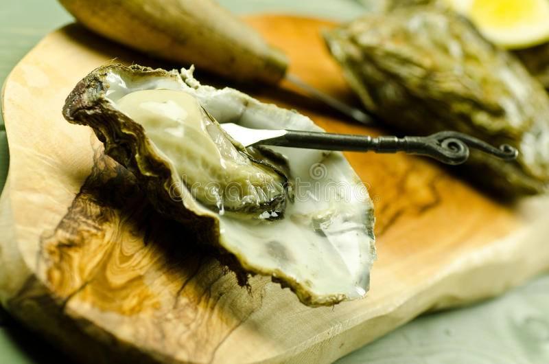 Устрицы: полезные свойства, состав и противопоказания