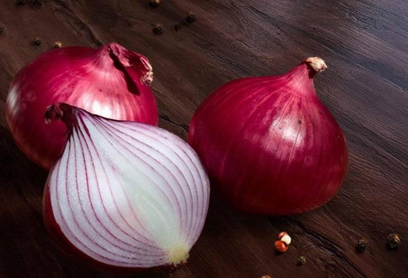 Красный лук: полезные свойства, как приготовить