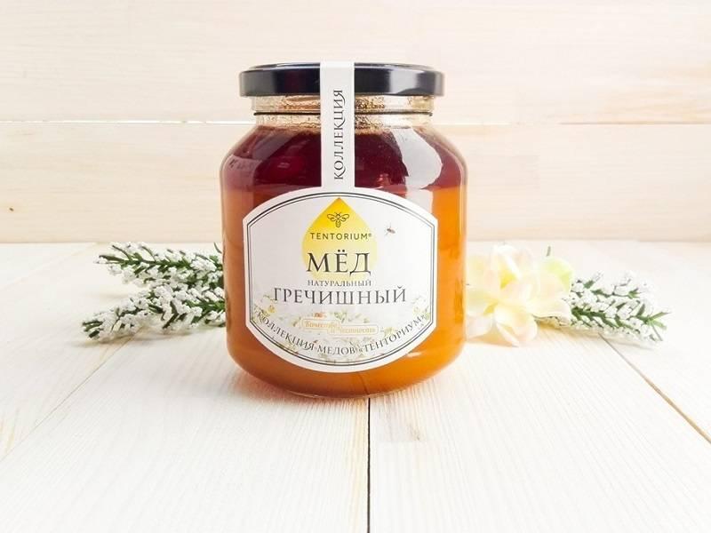Гречишный мед: польза и вред, из чего делают