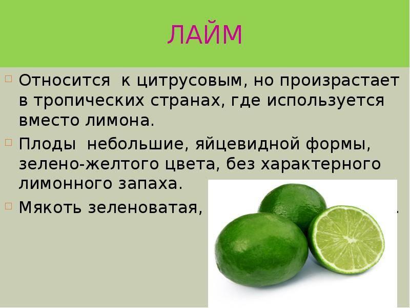 Что полезнее для здоровья лайм или лимон