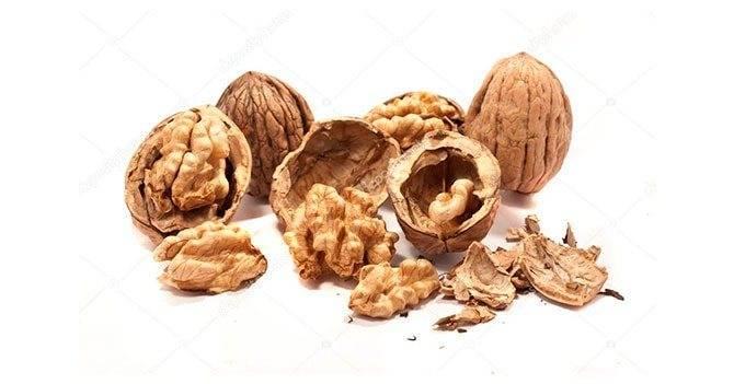Польза перегородок грецкого ореха — от каких болезней помогает, как применять