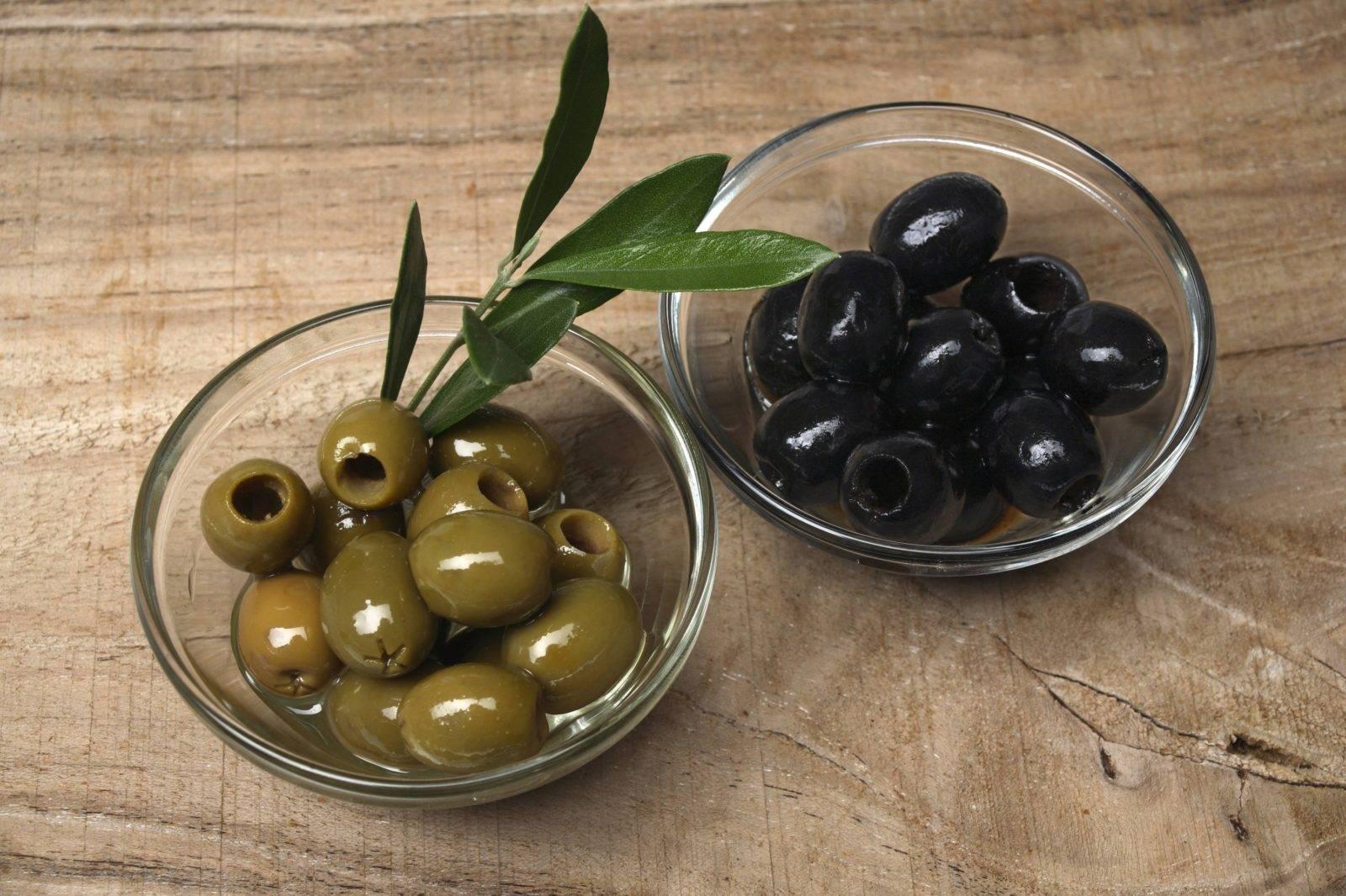 Польза и вред оливок для здоровья организма