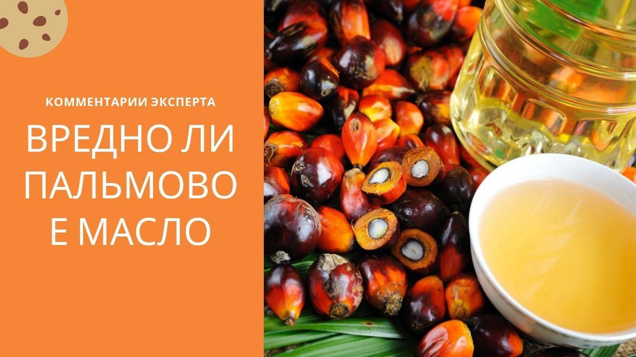 В чем вред и польза пальмового масла, и в каких продуктах оно содержится?