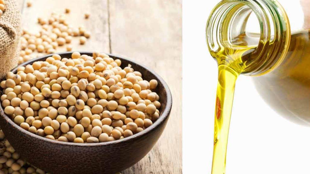 Соевое масло: вред и польза