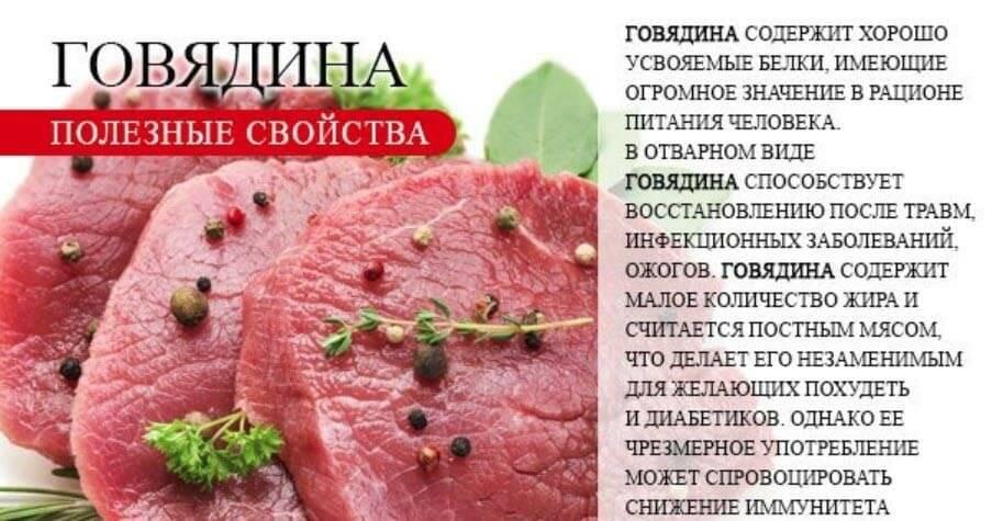 Мясо оленя — полезные свойства и вред