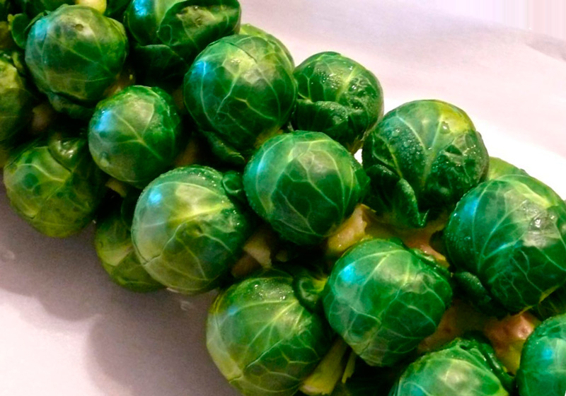 Брюссельская капуста – польза и вред вкусного овоща
