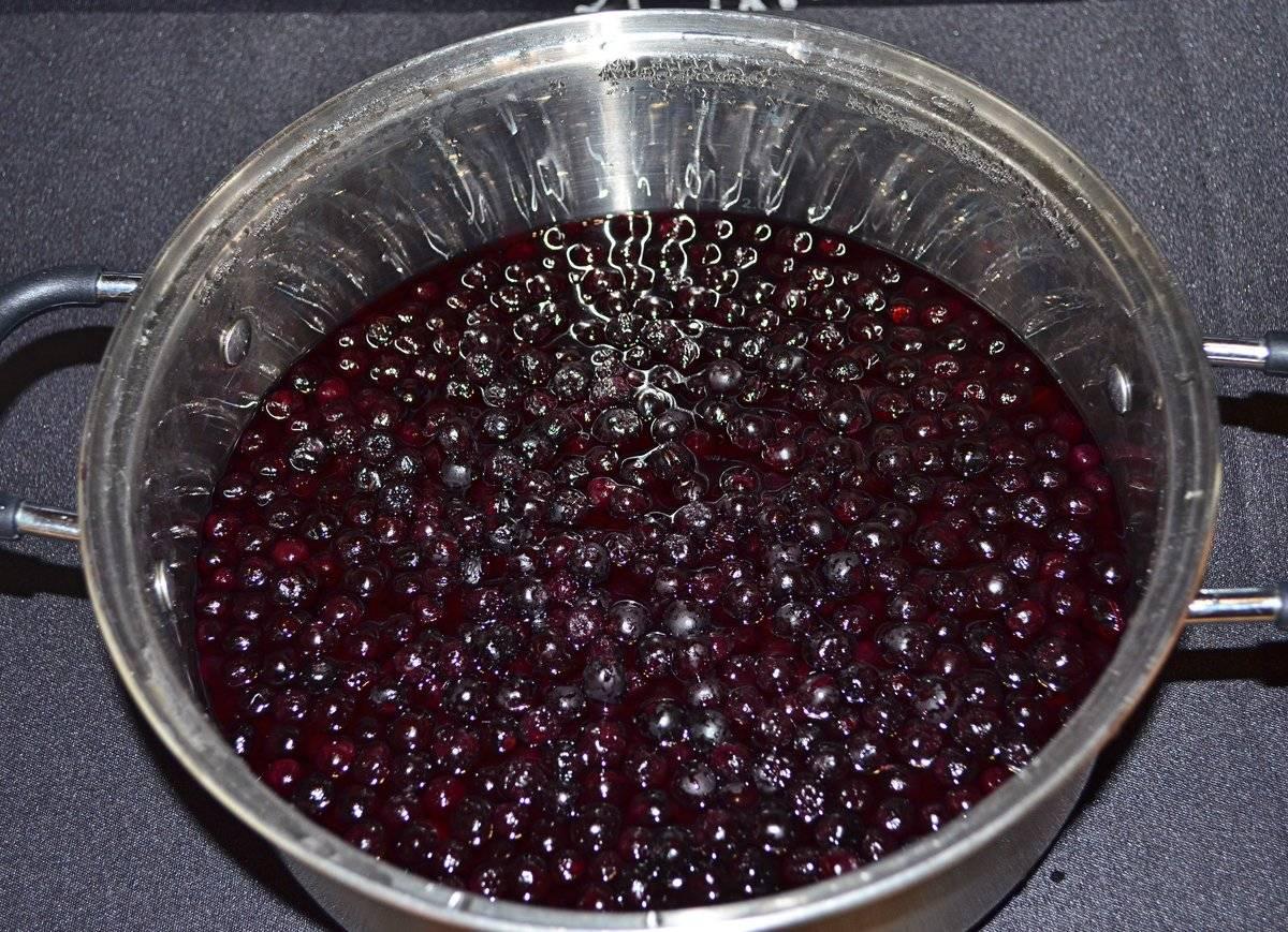 Как высушить черноплодную рябину в домашних условиях. сушка черноплодной рябины