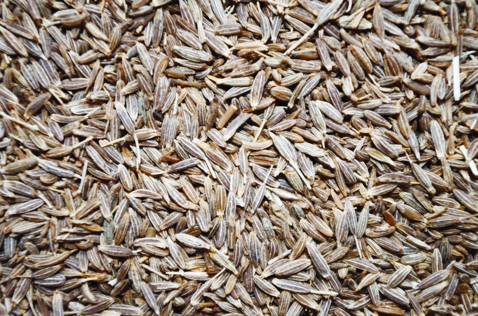 Полезные и лечебные свойства, применение в кулинарии приправы зира