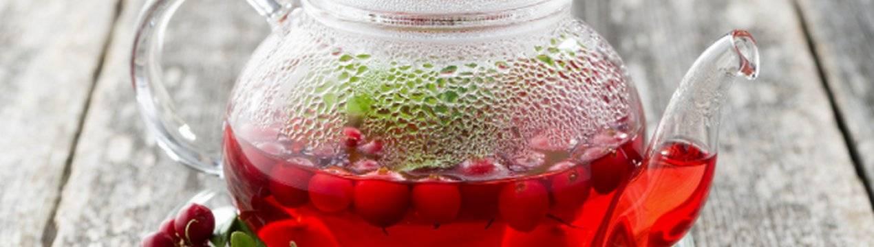 Польза и вред ягод и листьев брусники