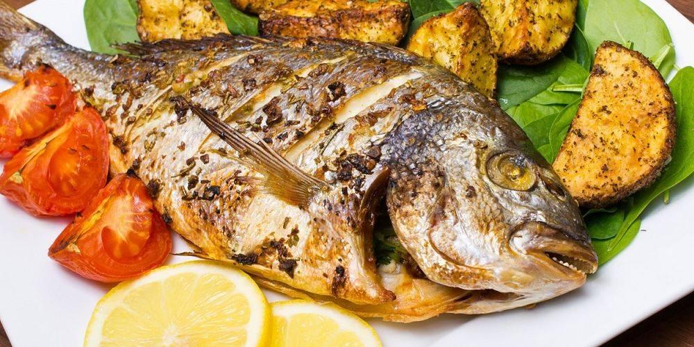 Рыба дорадо: польза и вред для организма. рыба дорадо польза и вред дорадо рыба зубы