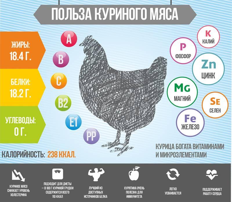 Мясо утки — польза и вред для организма