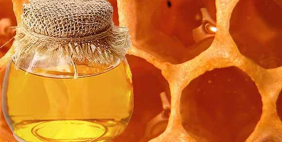 Чем полезен мёд для организма?