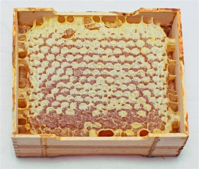 Можно ли есть пчелиные соты? польза, применение, вред