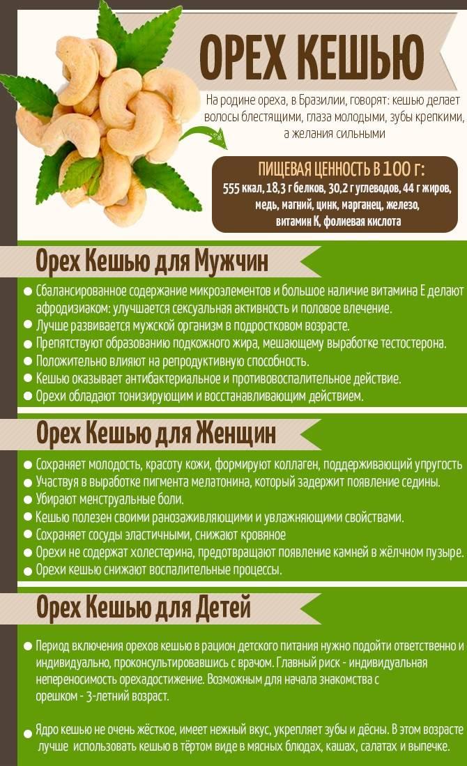 Полезные свойства и противопоказания кешью для женщин. суточная норма и рецепты