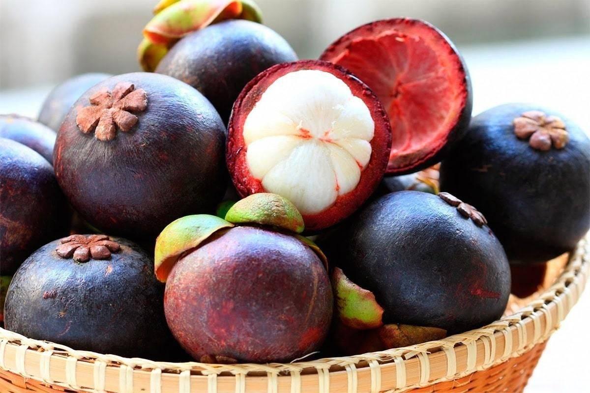 Тропическая сладость: фрукт мангустин и его полезные свойства для здоровья человека