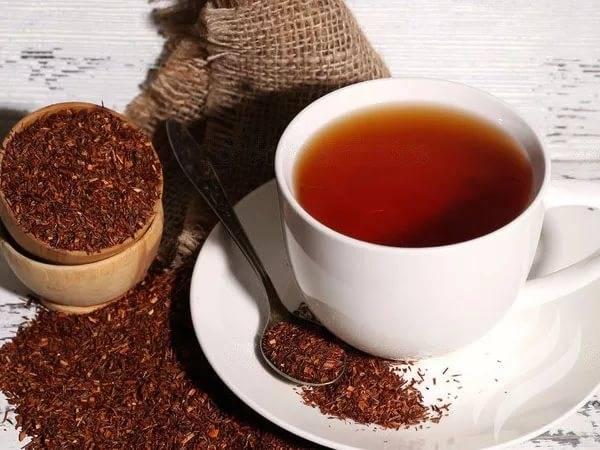 Чай ройбуш (ройбос): виды, состав, польза и противопоказания