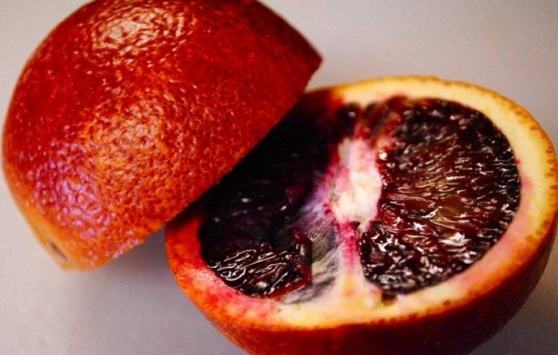 Женщина и апельсины — польза и вред
