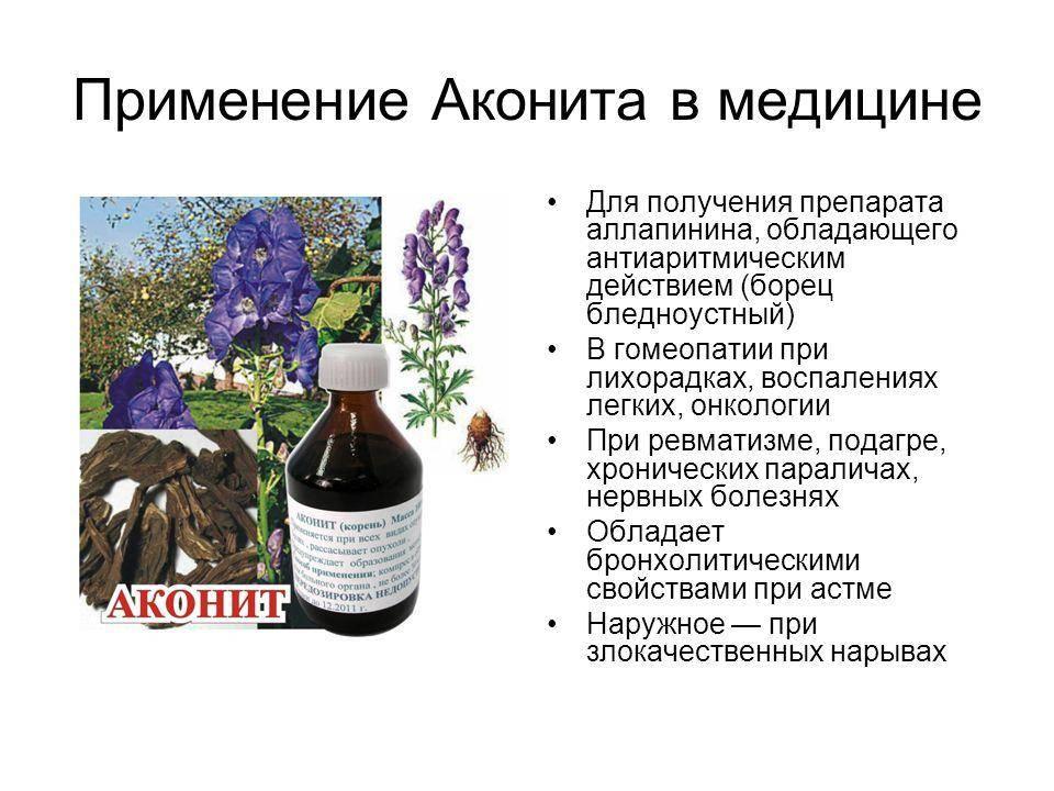 Растение аконит: описание и применение