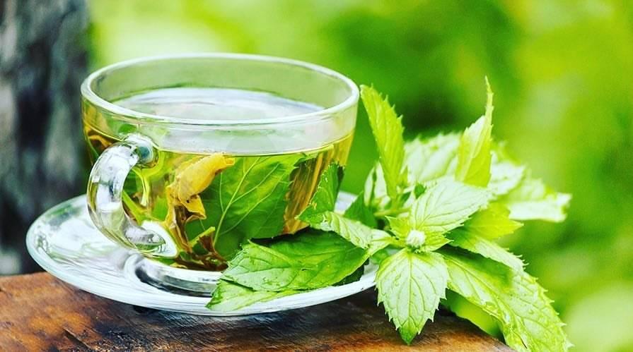 Чем полезен чай с листьями смородины?