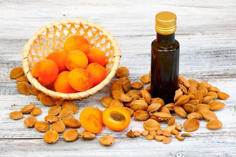 """""""абрикос: польза плодов и косточек, лечебные свойства и противопоказания"""""""