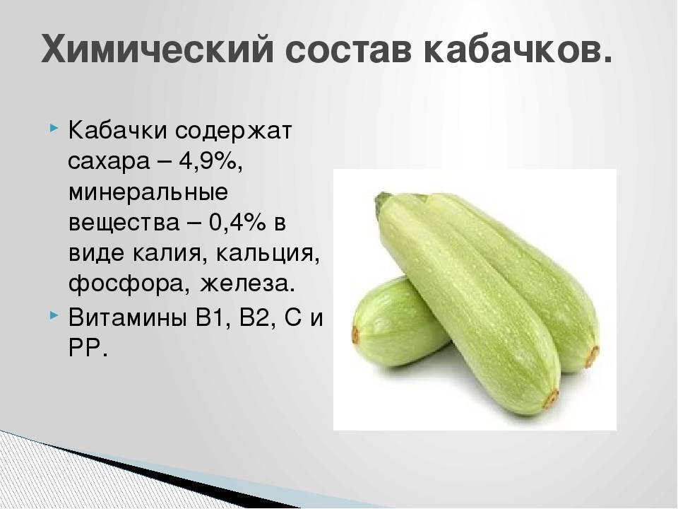 Польза и вред кабачков для здоровья человека, противопоказания