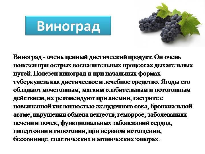 Польза и вред виноградных листьев для нашего организма