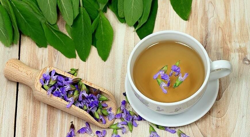Чай из лаванды польза и вред