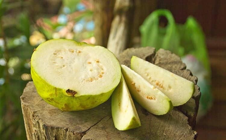 Гуава — польза и вред для здоровья организма