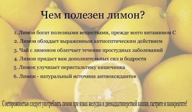 Дело не только в витаминах: 5 причин есть лимоны каждый день