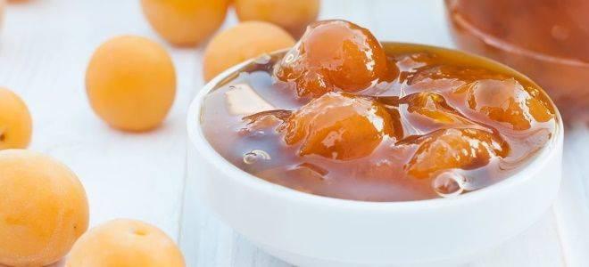 Варенье из алычи - 5 самых вкусных рецептов с фото пошагово