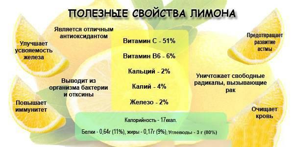 Настойка семян лимонника — польза и возможный вред