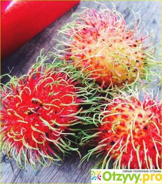 Польза и вред рамбутана - стоит ли напрягаться в поисках этого экзотического фрукта?