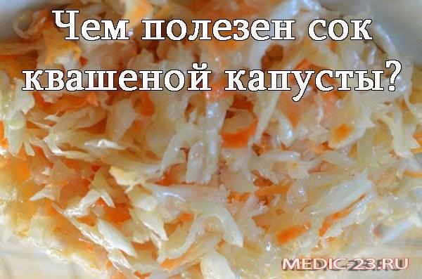 Квашеная капуста – польза и вред для организма