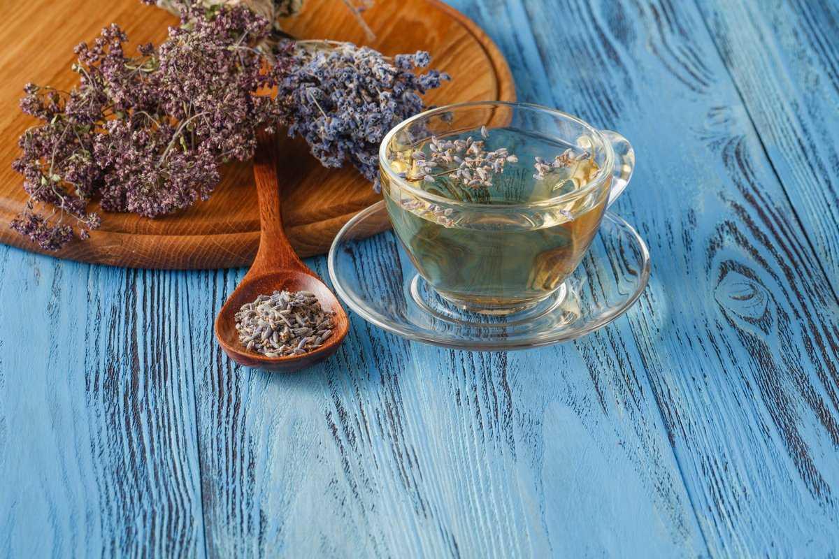 Чай с лавандой— полезных свойств напитка не счесть