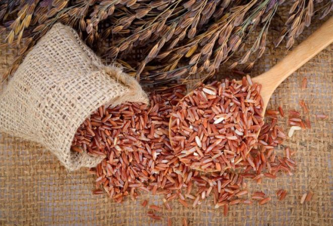 Чем полезен рис для человека — 5 тезисов с опорой на науку