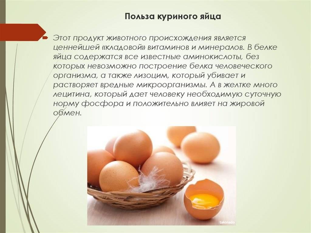 Яйца всмятку: польза и калорийность. как правильно варить яйца всмятку
