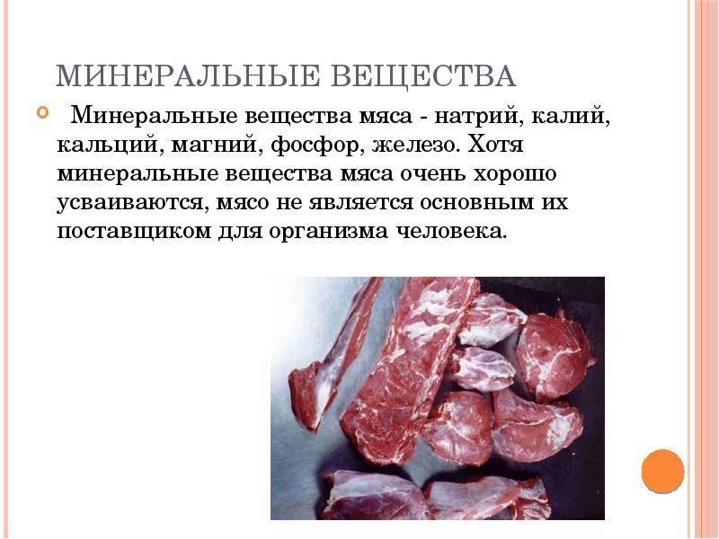 Польза и вред свинины — состав, свойства, правила выбора и хранения продукта. полезна или вредна свинина для беременных и кормящих женщин, для детей