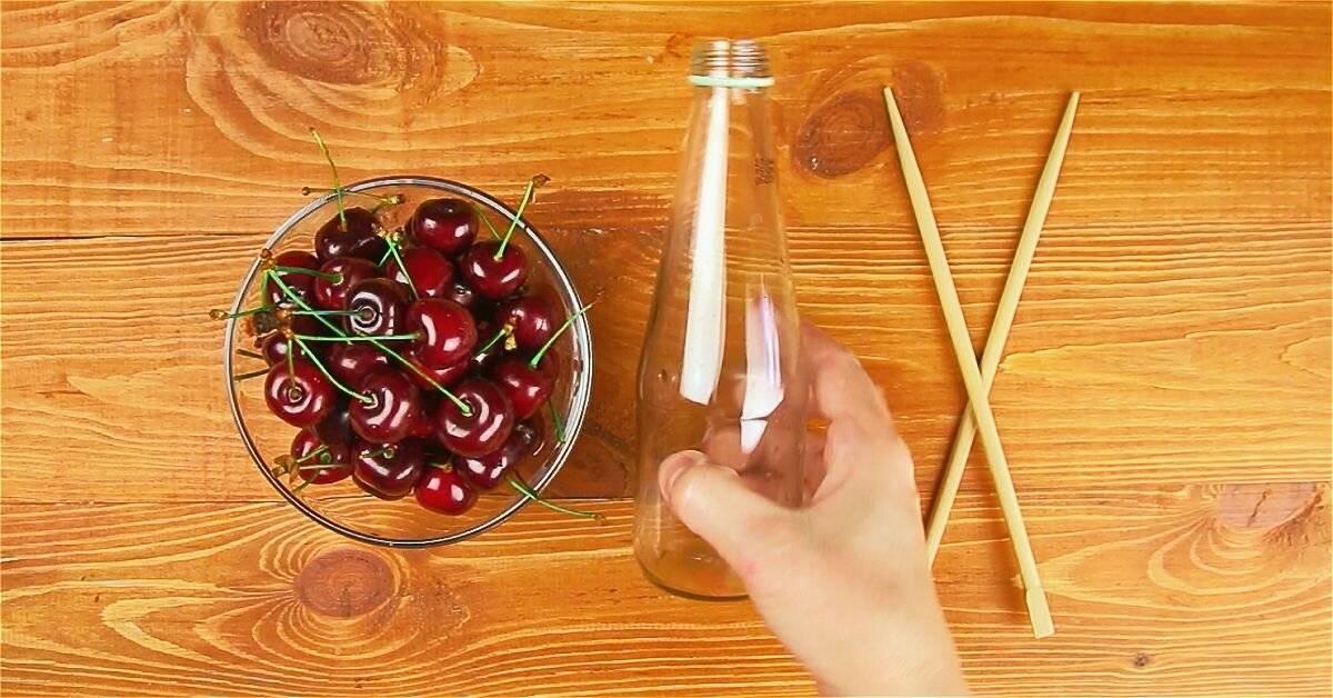 Как сушить вишню в домашних условиях: в элетросушилке и духовке?