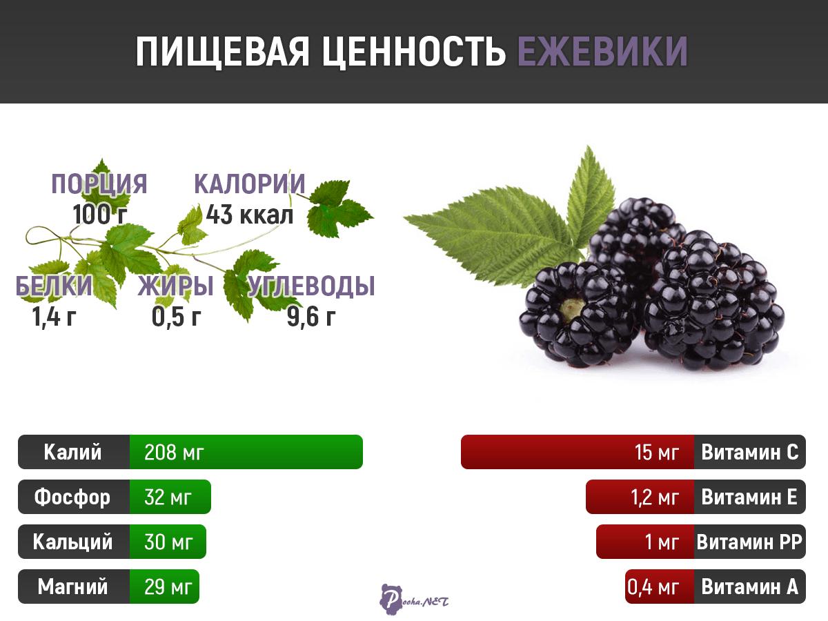 Ежевика: польза и вред чудо-ягоды. рецепты оздоровления