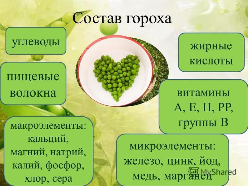 Полезные свойства зеленого горошка для организма