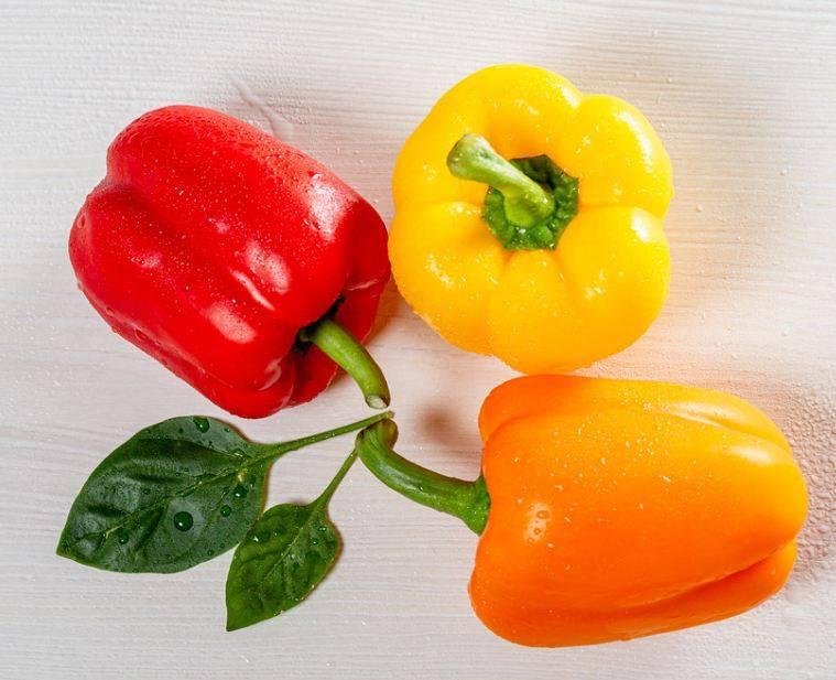Болгарский перец — польза и вред для организма