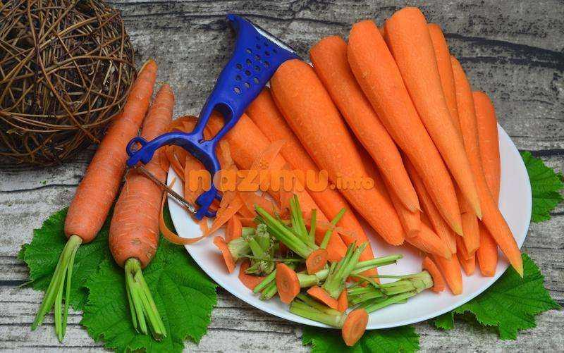 Сушка моркови в домашних условиях. как правильно сушить в духовке, микроволновке и электросушилке? как ее правильно хранить? можно ли сушить ботву?