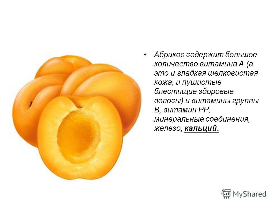 Чем полезны абрикосы — полезные свойства, состав, польза для здоровья и противопоказания к применению. 75 фото абрикос